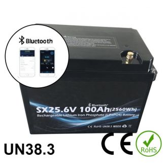24V 100Ah 2400Wh Battery Lithium iron phosphate