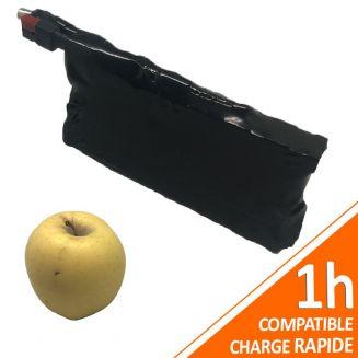 Batterie PVC 24V 3Ah 72Wh