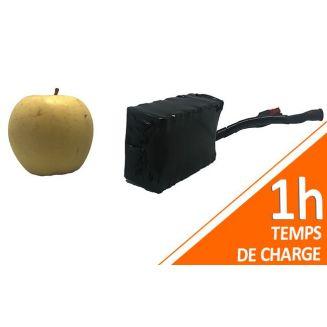 Batterie PVC 12V 3Ah 36Wh