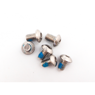 Disc screw for motor