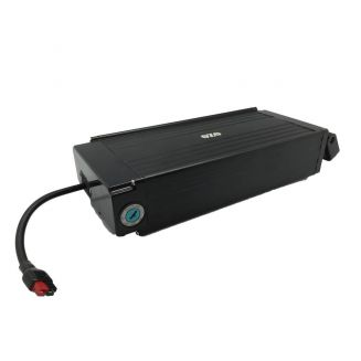 Batterie SONY 48V 11Ah pour porte bagages