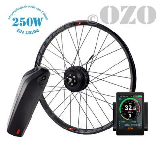 Road Kit 250W 700c rear wheel with 36V casing battery