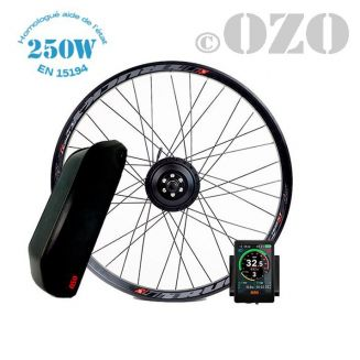 Touring Kit 250W front wheel 26 to 28 inch with 36V casing battery